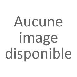 Amuse Bouchon